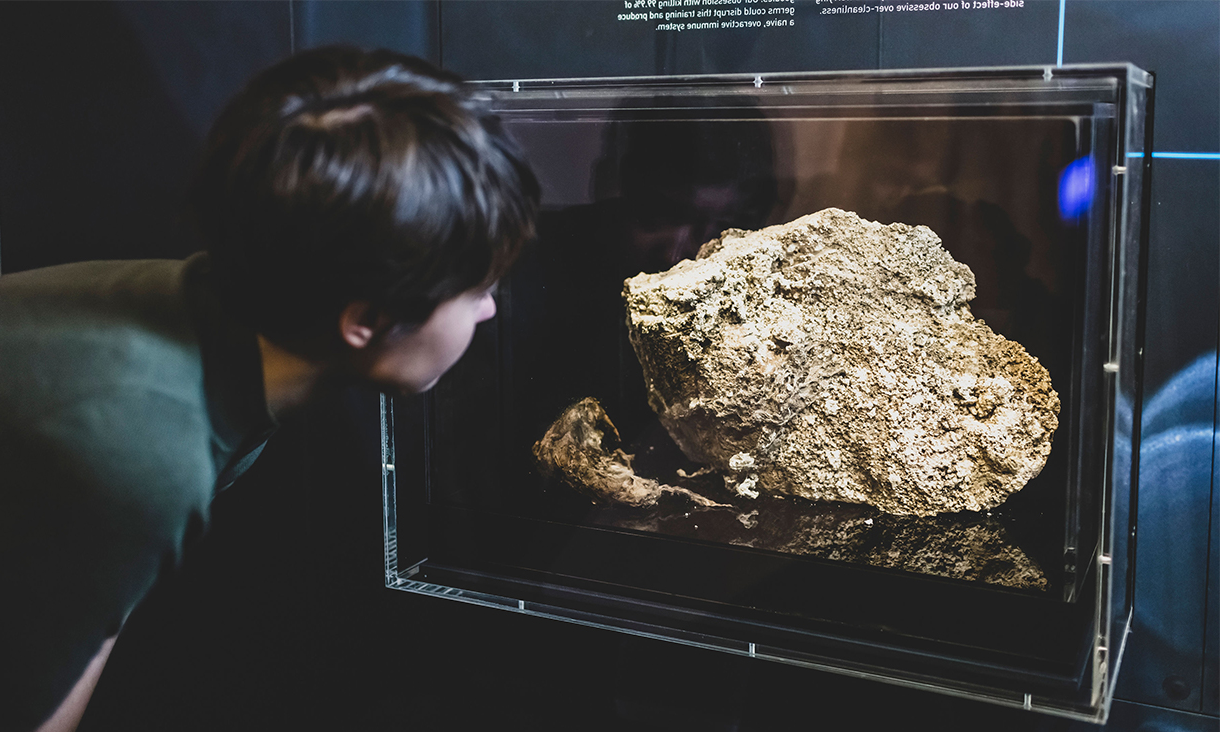 Fatberg on display in the Melbourne Museum.